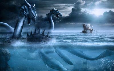 Sea creature Wallpaper