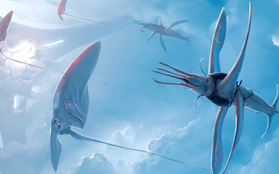 Sea creatures Wallpaper
