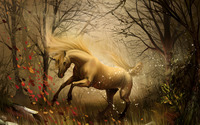 Unicorn in the enchanted forest wallpaper 2560x1440 jpg