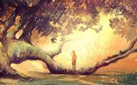 Wandering in the forest wallpaper 1920x1200 jpg