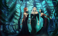 Witches in the forest wallpaper 2560x1440 jpg