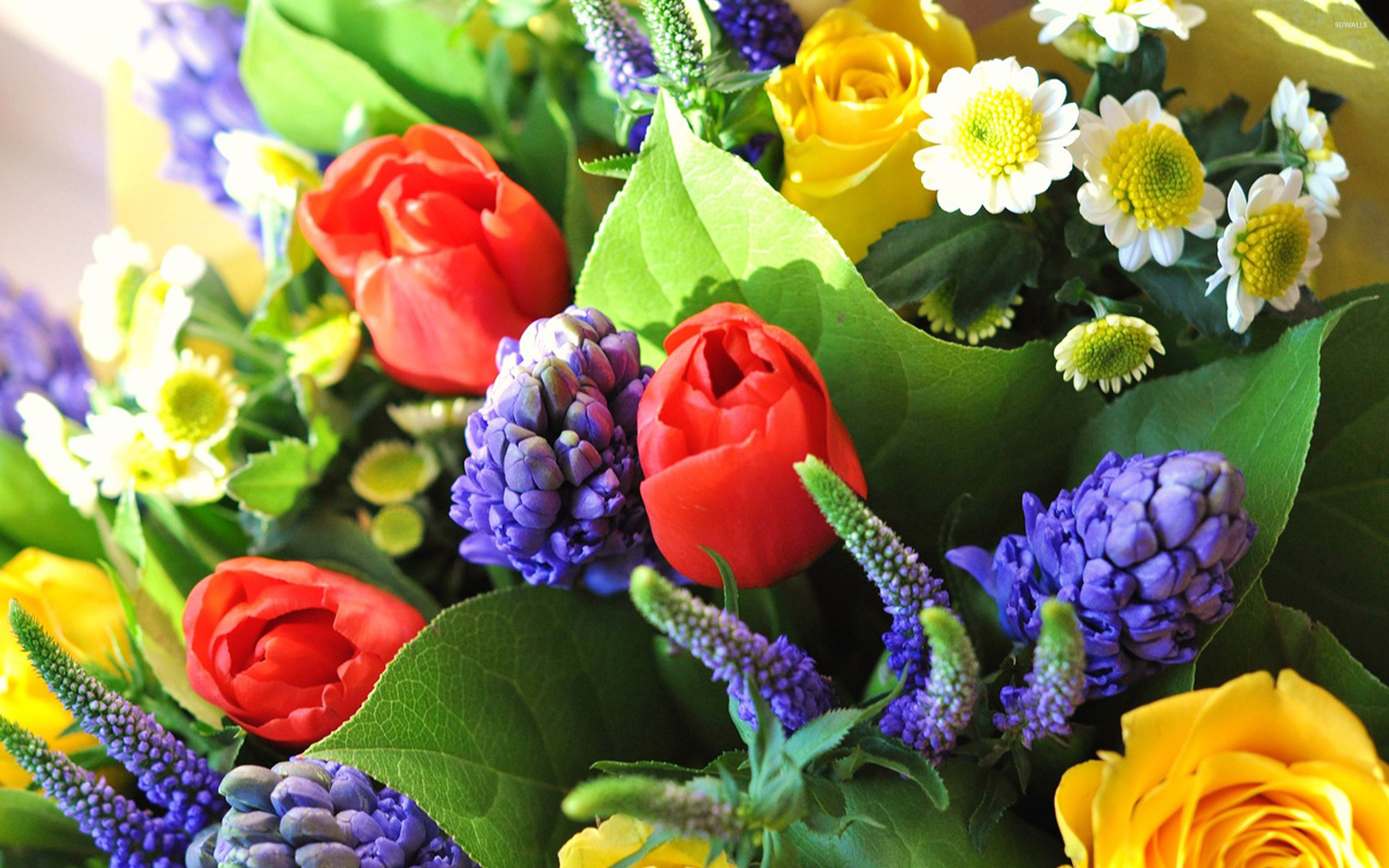 wallpaper flowers bouquet blue - photo #39