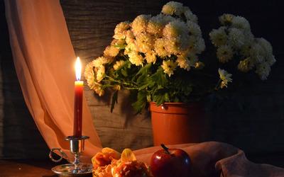 Chrysanthemum bouquet [2] wallpaper