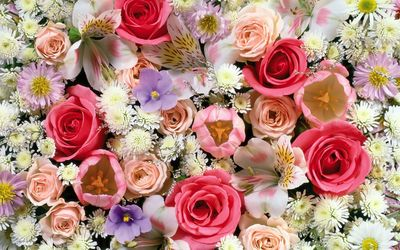 Colorful roses in the bouquet wallpaper