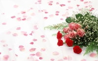 Pink and red roses wallpaper 1920x1200 jpg