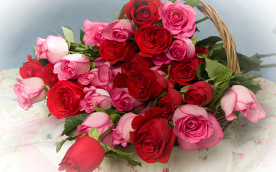 Pink and red roses in a basket wallpaper