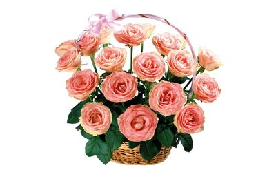 Pink roses in the basket wallpaper