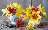 Red and yellows lilies wallpaper 1920x1200 jpg