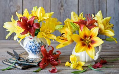 Red and yellows lilies wallpaper