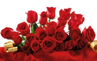Red roses bouquet wallpaper 1920x1200 jpg