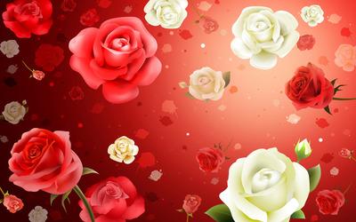 Roses [2] wallpaper