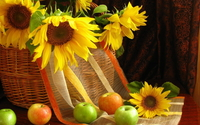 Sunflowers in a basket [2] wallpaper 1920x1080 jpg