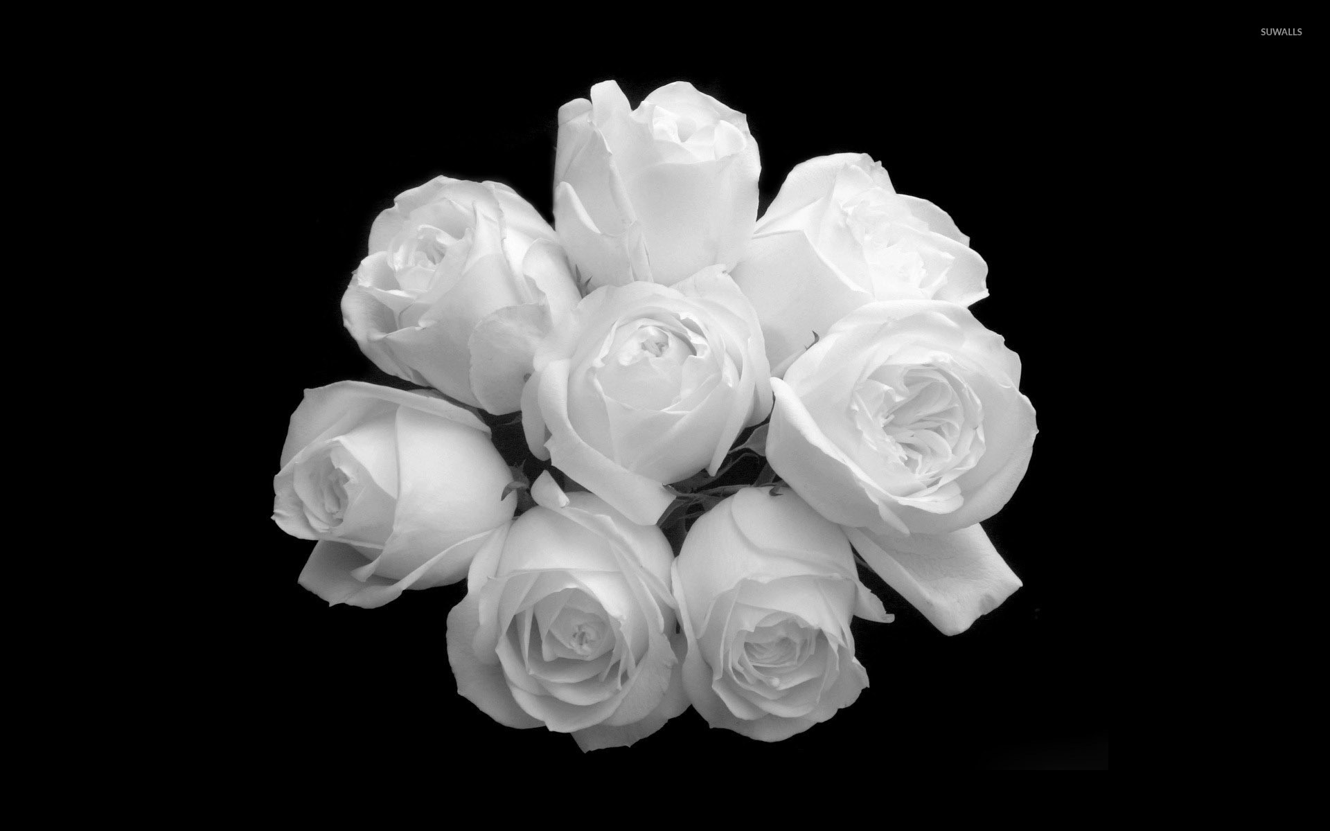 white rose bouquet [2] wallpaper - flower wallpapers - #116