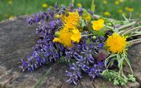 Yellow and purple wildflower bouquet wallpaper 2880x1800 jpg