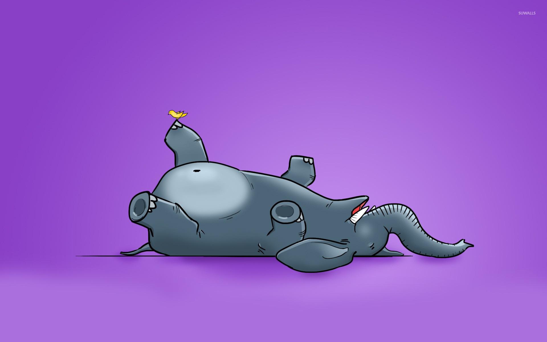 Good Wallpaper Cartoon Elephant - bird-tickling-the-elephant-20958-1920x1200  Gallery_801392  .jpg