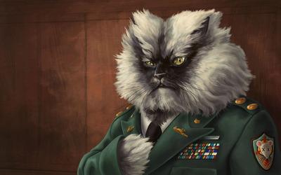 Colonel Meow wallpaper