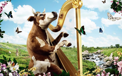 Cow playing the harp wallpaper