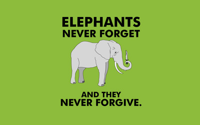 Elephants never forget wallpaper