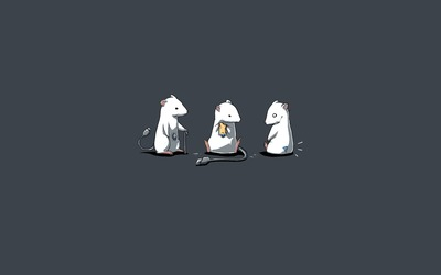 Mouse types wallpaper