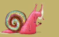 Pipe Smoking snail wallpaper 1920x1200 jpg