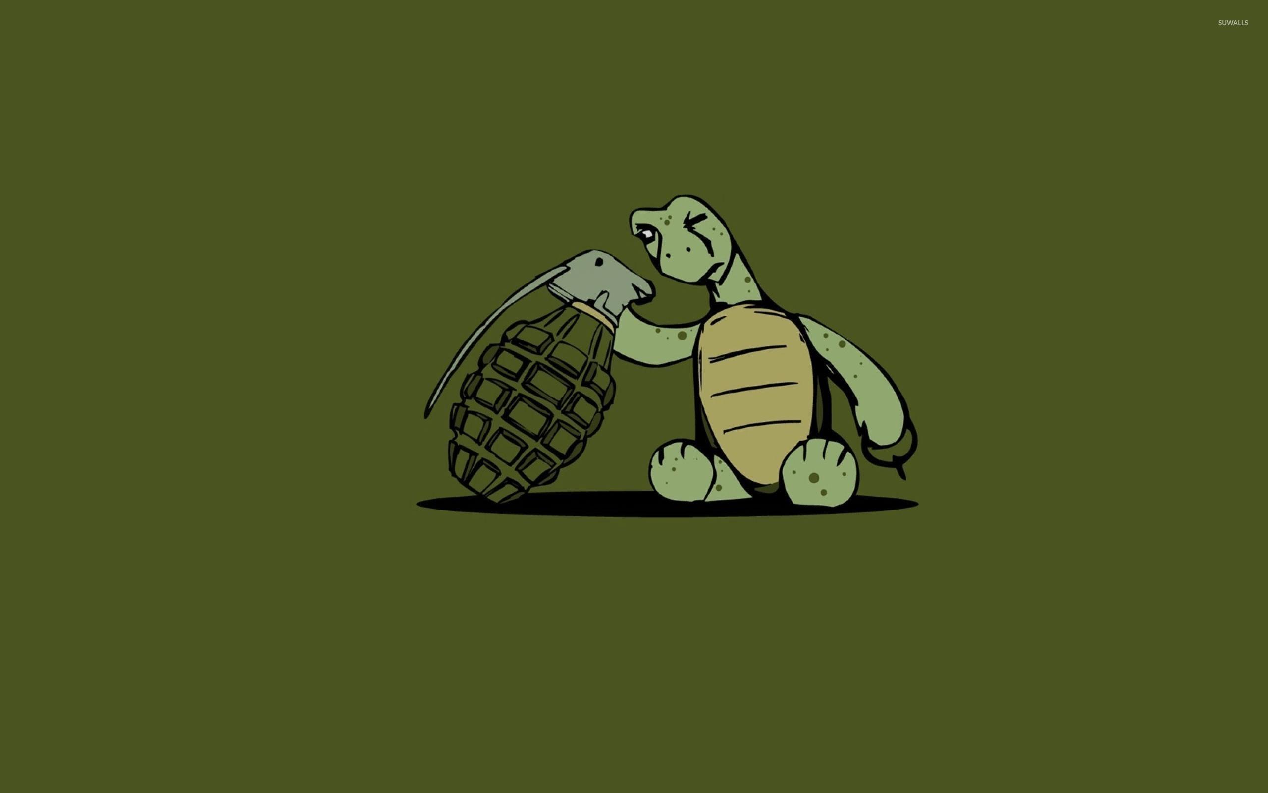 wallpaper funny turtle rain - photo #35