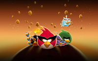 Angry Birds Space wallpaper 2560x1600 jpg