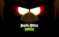 Angry Birds Space [3] wallpaper 2560x1600 jpg