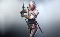 Ciri - The Witcher 3: Wild Hunt wallpaper 2560x1600 jpg