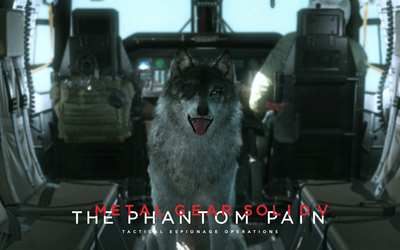 DD - Metal Gear Solid V: The Phantom Pain wallpaper