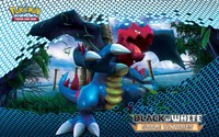 Druddigon - Pokemon wallpaper 1920x1200 jpg