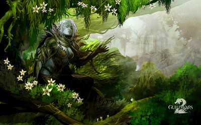 Guild Wars 2 [20] wallpaper