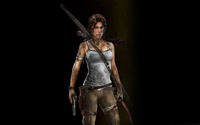 Lara Craft - Tomb Raider wallpaper 2560x1600 jpg