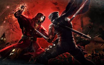 Ninja Gaiden 3 wallpaper