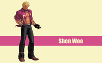 Shen Woo - The King of Fighters wallpaper 2560x1600 jpg