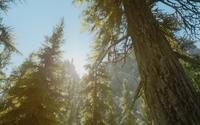 The Elder Scrolls V: Skyrim [39] wallpaper 2560x1440 jpg
