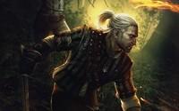 The Witcher 2: Assassins of Kings [3] wallpaper 2560x1600 jpg