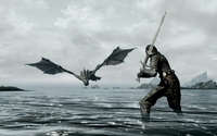 Warrior ready to fight a dragon in Skyrim wallpaper 1920x1080 jpg