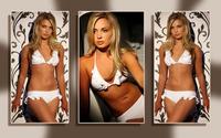 Alize Lily Mounter wallpaper 2880x1800 jpg