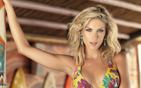 Ana Hickmann [4] wallpaper 1920x1200 jpg