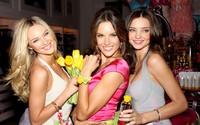 Candice Swanepoel, Alessandra Ambrosio and Miranda Kerr wallpaper 2560x1600 jpg