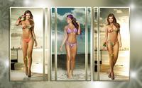 Carolina Cruz wallpaper 2560x1600 jpg