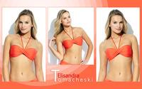 Elisandra Tomacheski [30] wallpaper 2560x1600 jpg