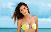 Lily Aldridge [2] wallpaper 1920x1200 jpg