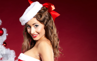 Santa's little helper [4] wallpaper 2560x1600 jpg