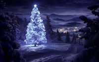 Bright star on top of a beautiful snowy tree in the forest wallpaper 1920x1080 jpg