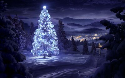 Bright star on top of a beautiful snowy tree in the forest wallpaper