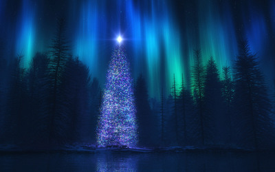 Christmas tree in the forest wallpaper