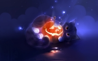 Cute kitten holding a happy Jack-o'-lantern wallpaper 1920x1200 jpg