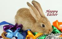 Easter bunny [4] wallpaper 1920x1200 jpg