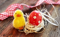 Easter decoration wallpaper 2560x1600 jpg